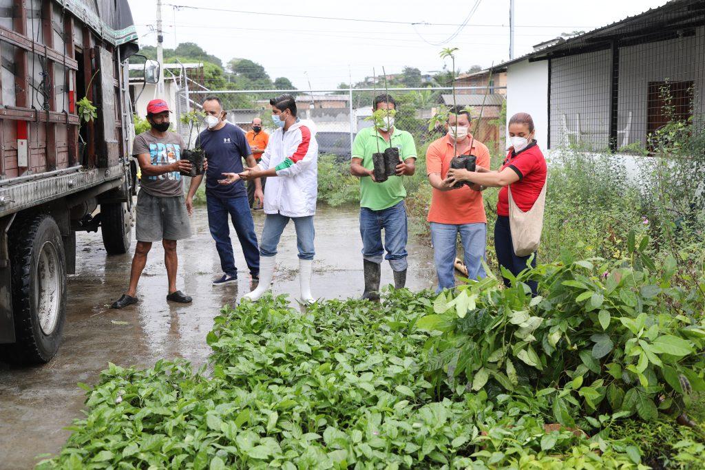 Entrega plantas Manabí FIEDS-13-2019